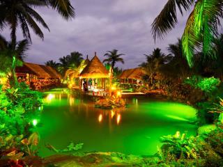 Overwater Night Show & Dinner